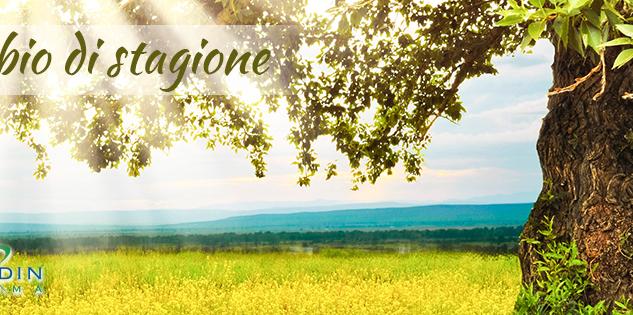 Magnesio: un grande aiuto per il cambio di stagione