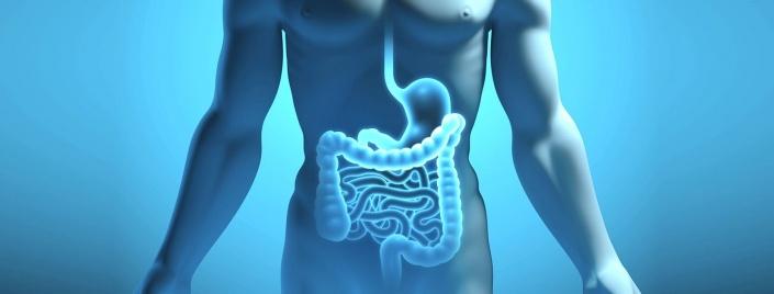 Flora batterica e probiotici Paladin Pharma