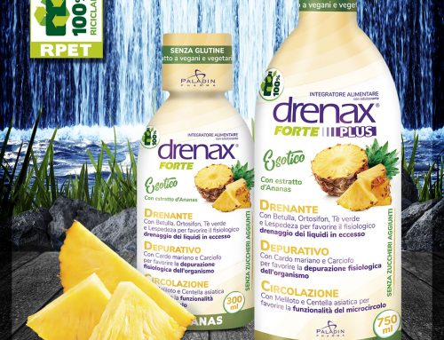 Drenax Forte Ananas Plus 750ml