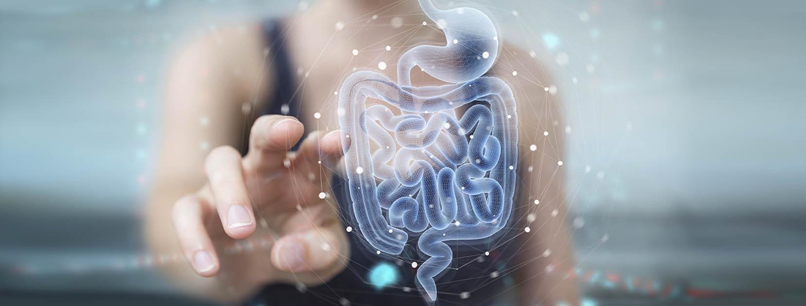Probiotici benefici prebiotici